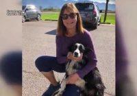 Sieviete pamet darbu un pavada 57 dienas meklējot savu pazudušo suni – lūk kā tas viss beidzās