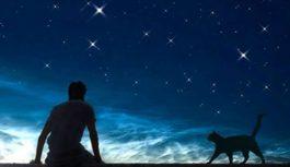 Kā kaķis izvēlas saimnieku (un viņa izvēles garīgā nozīme)